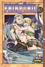 FAIRY TAIL 45
